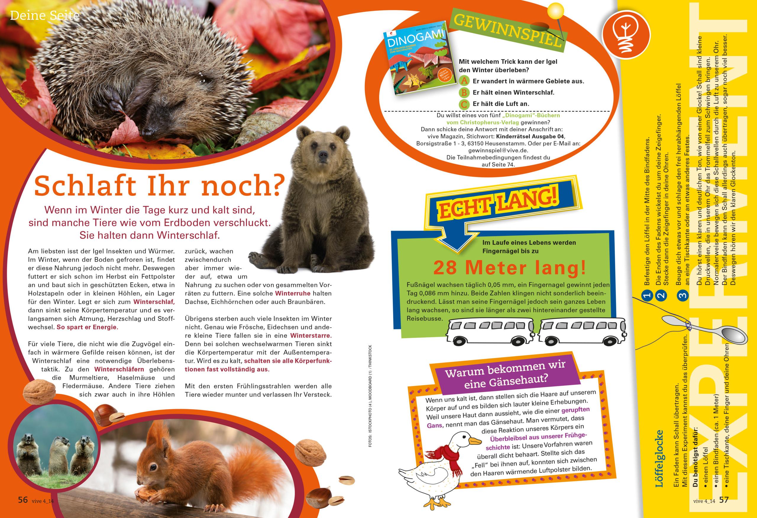 VIVE / ALPHEGA Kundenmagazin – Kinderseiten -Thema Winterschlaf